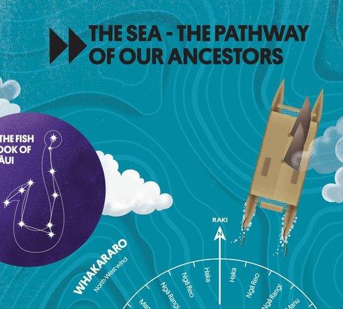 NZ Festival Waka Odyssey Teachers Resource Kit