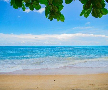The Romance of Paeora and Hinemāia